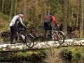 rower_804_20.jpg