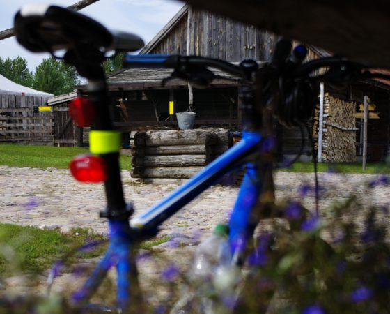 Rower w Puszczy